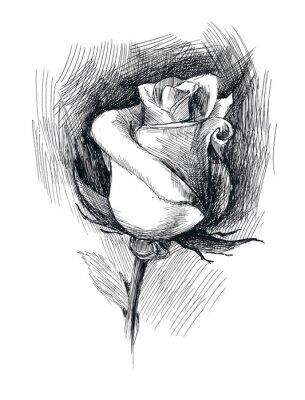 Quadro fiore abbozzo