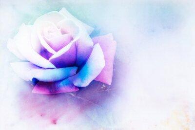 Quadro Fiore acquerello illustrazione.