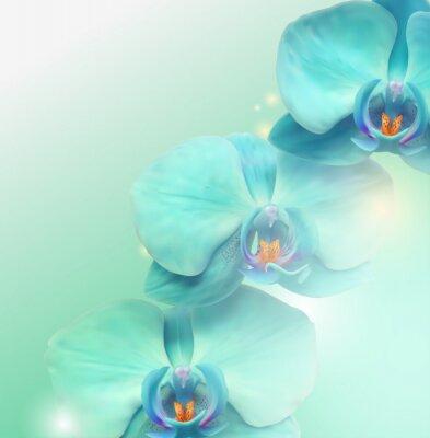 Quadro fiore di orchidea sfondo