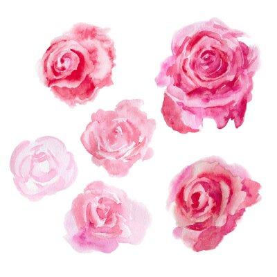 Quadro fiori acquerello. Rose