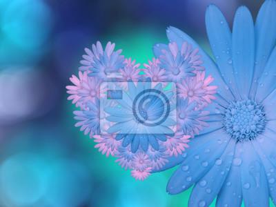 Fiori Blu Rosa Sul Blu Turchese Offuscata Sfondo Avvicinamento