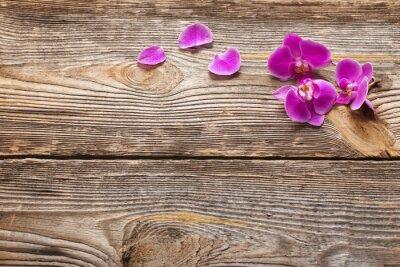 Quadro fiori di orchidea rosa su uno sfondo di legno