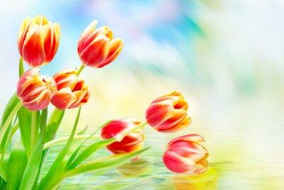 Quadro fiori di tulipano vicino
