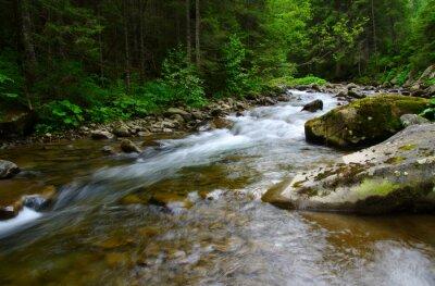 Quadro fiume della montagna