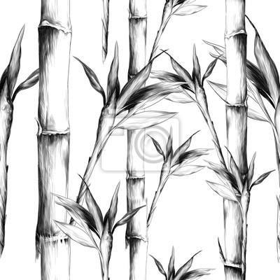 Quadro foglie rami gambo modello di bambù fiori trama cornice senza soluzione di continuità grafica vettoriale monocromatico disegno in bianco e nero