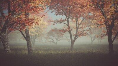 Quadro Foresta di autunno nella nebbia.