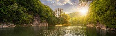 Quadro foresta fluviale con le pietre sulla riva al tramonto