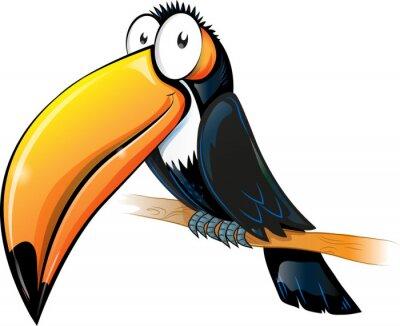 Quadro fun toucan cartoon isolated on white.