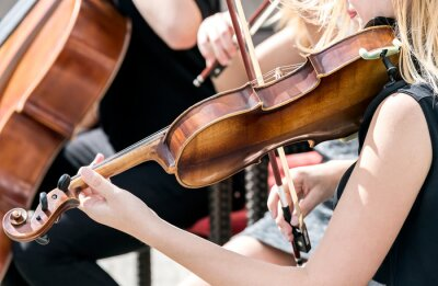 Quadro giovane donna suonare il violino