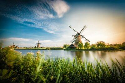 Quadro Gli storici mulini a vento olandesi vicino Rotterdam