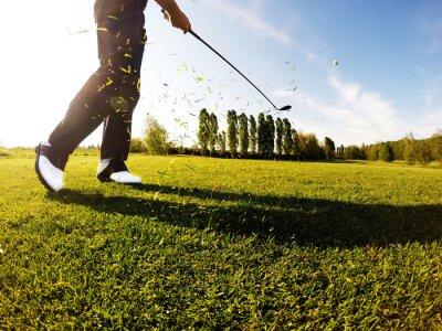 Quadro Golfista esegue un colpo di golf dal fairway.