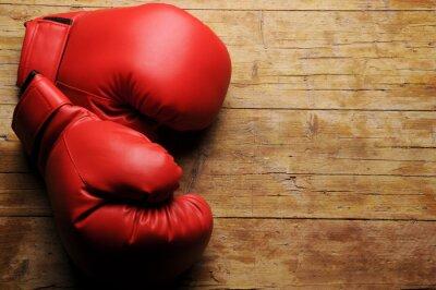 Quadro ¿Guanti En serio la boxe?