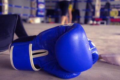 Quadro Guantoni da boxe Blu