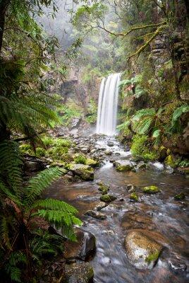 Quadro Hopetoun Falls, una cascata appartata nel Otway Ranges, Australia