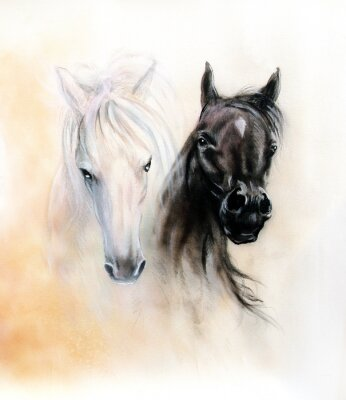 Quadro Horse heads, two black and white horse spirits, beautiful detail