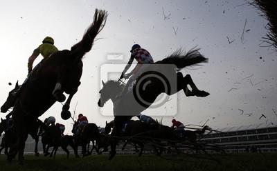 Quadro Horse Racing salto recinzione
