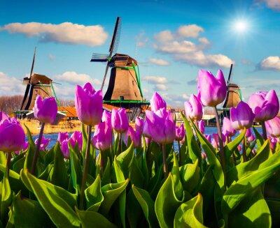 Quadro I famosi mulini a vento olandesi
