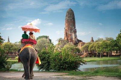 Quadro I turisti su un elefante ride tour della città antica Ayutaya, Tailandia