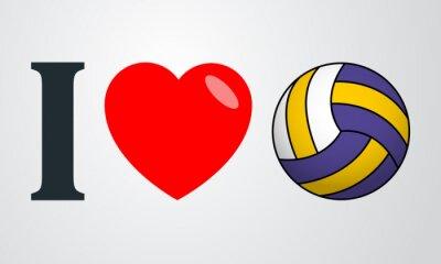 Quadro Icono plano amo colore voleibol en fondo degradado