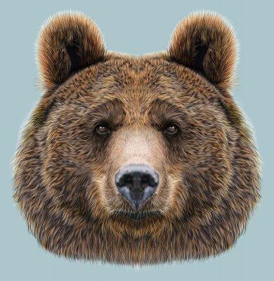 Quadro Illustrato Ritratto di Bear su sfondo blu
