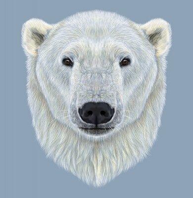 Quadro Illustrato Ritratto di orso polare