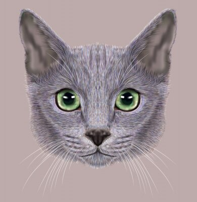 Quadro Illustrazione del ritratto del russo gatto blu. Carino Gatto domestico con gli occhi verdi.