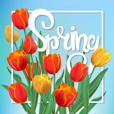 Quadro illustrazione di primavera con tulipani e telaio.