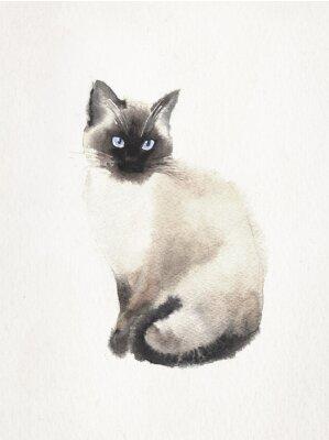 Quadro illustrazione Watercolored di un gatto siamese