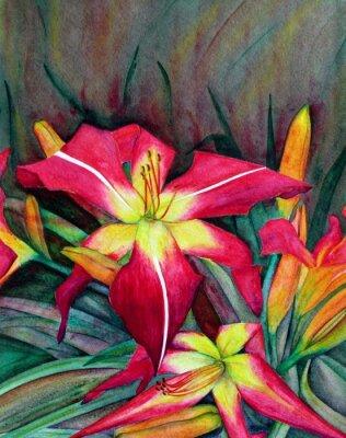 Quadro illustrazioni acrilico di fiori vivaci. Fiori gigli di giorno.