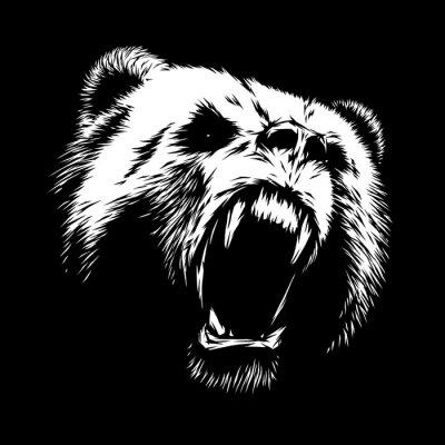 Quadro incidere illustrazione orso