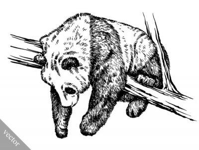 Quadro incidere inchiostro pareggio panda illustrazione