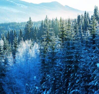 Quadro Inverno montagne