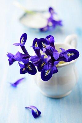 Quadro Iris viola fiori in una tazza d'epoca