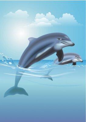Quadro Jumping Dolphins Illustrazione
