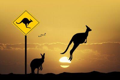 Quadro Kangaroo segno cautela