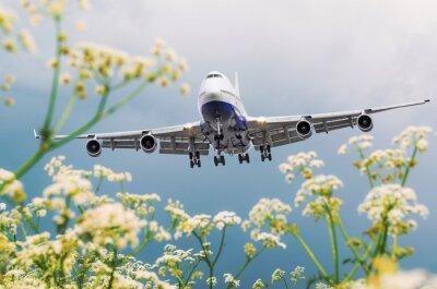 Quadro L'aeroplano commerciale del passeggero vola sopra i giacimenti di fiore all'aeroporto.