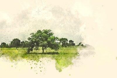 Quadro L'albero e il campo astratti abbelliscono sul fondo della pittura dell'illustrazione dell'acquerello.