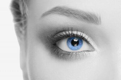 Quadro L'occhio umano