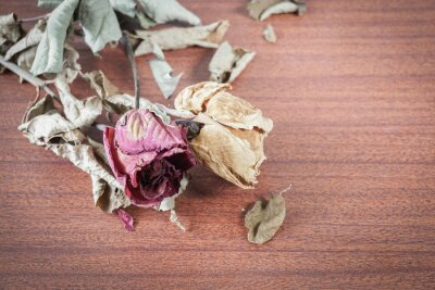 Quadro L'ultimo San Valentino rosa.