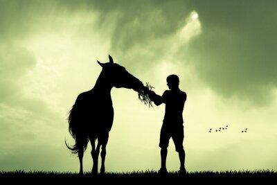 Quadro l'uomo e il cavallo al tramonto
