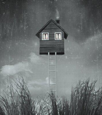 Quadro La casa volante
