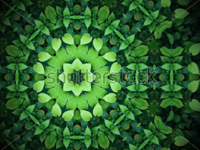 Quadro La priorità bassa astratta della pianta, cuore ha modellato i fogli verdi con effetto del caleidoscopio