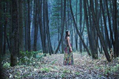 Quadro La ragazza in una selva oscura
