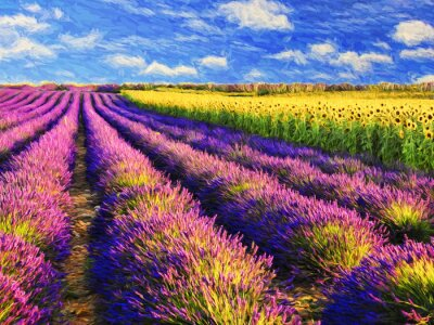 Quadro Lavender and sunflowers field.