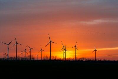 Quadro Le turbine eoliche in natura con sciame di uccelli nel tramonto