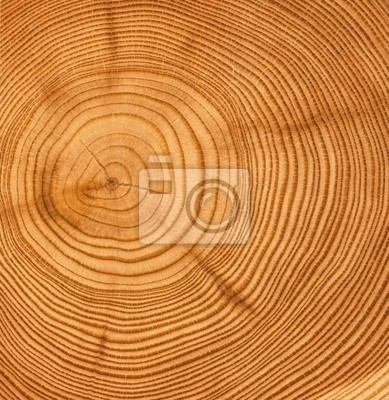Quadro legno tagliato tessitura