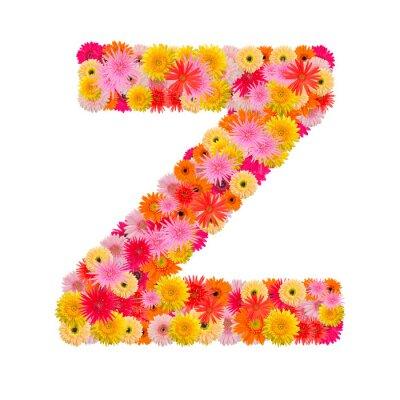 Quadro Lettera alfabeto Z con gerbera isolato su sfondo bianco