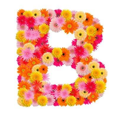 Quadro Lettera B alfabeto con gerbera isolato su sfondo bianco