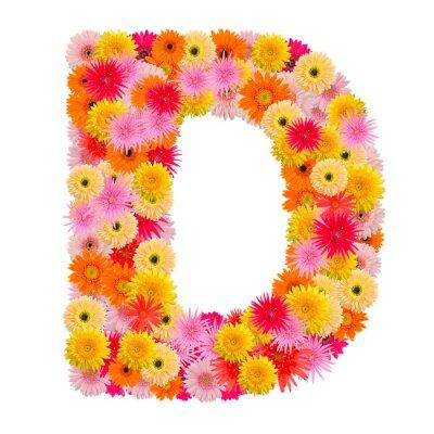 Quadro Lettera D alfabeto con gerbera isolato su sfondo bianco