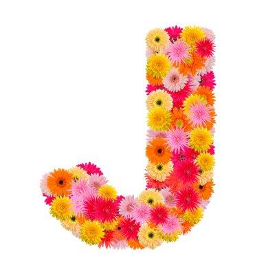 Quadro Lettera J alfabeto con gerbera isolato su sfondo bianco